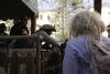 carnevale-bedonia-2012-10172