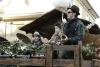 carnevale-bedonia-2012-10273