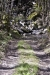 cascate-groppo-albareto-parma-val-gotra-1184