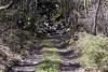 cascate-groppo-albareto-parma-val-gotra-1185