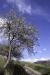 cascate-groppo-albareto-parma-val-gotra-1263