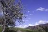 cascate-groppo-albareto-parma-val-gotra-1266