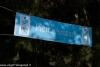 expo-taro-ceno-2012-compiano-parma-301