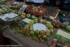 expo-taro-ceno-2012-compiano-parma-338-frutta-antica