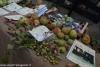 expo-taro-ceno-2012-compiano-parma-339-frutta-antica