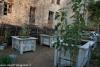 expo-taro-ceno-2012-compiano-parma-417-orto-e-frutteto