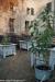 expo-taro-ceno-2012-compiano-parma-418-orto-e-frutteto