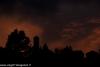 festa-della-castagna-2012-folta-albareto-145-tramonto