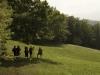 07-07-2012-fotografiamo-loasi-dei-ghirardi-19