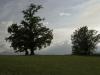07-07-2012-fotografiamo-loasi-dei-ghirardi-37