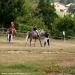 monte-fuso-126-centro-equestre