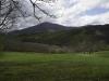 oasi-ghirardi-aprile-2012-val-taro-1018