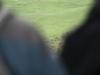 oasi-ghirardi-aprile-2012-val-taro-1021