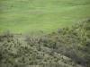 oasi-ghirardi-aprile-2012-val-taro-1023