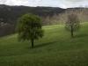 oasi-ghirardi-aprile-2012-val-taro-1026
