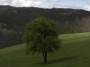 oasi-ghirardi-aprile-2012-val-taro-1027