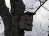 oasi-ghirardi-aprile-2012-val-taro-1030