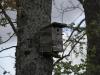 oasi-ghirardi-aprile-2012-val-taro-1031