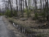 oasi-ghirardi-aprile-2012-val-taro-1035