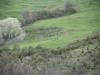oasi-ghirardi-aprile-2012-val-taro-1045