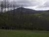 oasi-ghirardi-aprile-2012-val-taro-1054