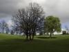 oasi-ghirardi-aprile-2012-val-taro-1072