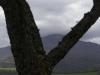 oasi-ghirardi-aprile-2012-val-taro-1101