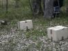 oasi-ghirardi-aprile-2012-val-taro-1104