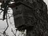oasi-ghirardi-aprile-2012-val-taro-1141