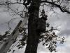 oasi-ghirardi-aprile-2012-val-taro-1156