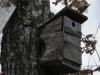 oasi-ghirardi-aprile-2012-val-taro-1157