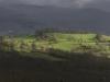 oasi-ghirardi-aprile-2012-val-taro-1169
