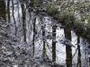 oasi-ghirardi-aprile-2012-val-taro-1173