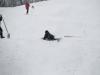 albareto-sci-slalom-2012-327