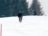 albareto-sci-slalom-2012-658