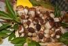 fiera-del-fungo-albareto-07-09-2012-122-porcini