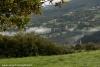 nebbia-val-gotra-val-taro-14-10-2012101-boschetto-albareto