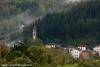 nebbia-val-gotra-val-taro-14-10-2012105-boschetto-albareto