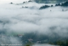 nebbia-val-gotra-val-taro-14-10-2012120