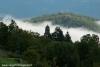 nebbia-val-gotra-val-taro-14-10-2012123