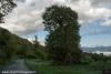 nebbia-val-gotra-val-taro-14-10-2012125