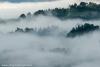 nebbia-val-gotra-val-taro-14-10-2012129a