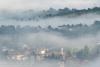 nebbia-val-gotra-val-taro-14-10-2012129c
