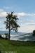 nebbia-val-gotra-val-taro-14-10-2012154