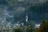 nebbia-val-gotra-val-taro-14-10-2012161-boschetto-albareto