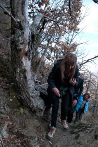 20120102 Passeggiatai tesori (45) sentiero