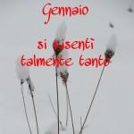 Tombeto di Albareto 29-01-2012 Giorni della Merla (15)