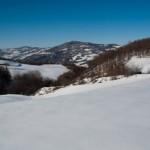 5 Tracce neve (344)