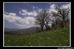 Primavera 2009 Oasi dei Ghirardi - repertorio-5365