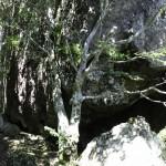 Monte Penna - Escursione  (56)